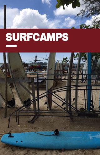 surfcamps de malamalama travels