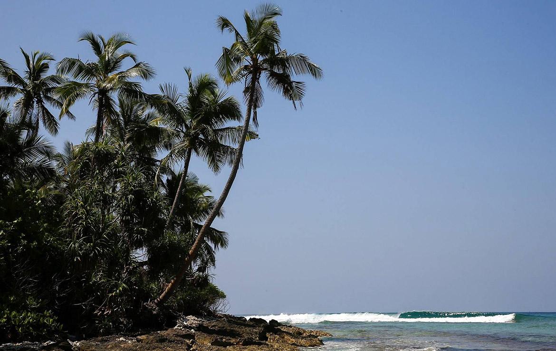 Playa paradisíaca tropical con palmeras y olas